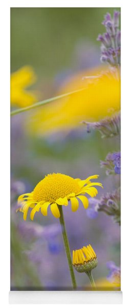 Yellow And Purple Flowers On A Green Summer Meadow Yoga Mat