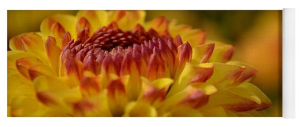 Yellow Dahlia Red Tips Yoga Mat