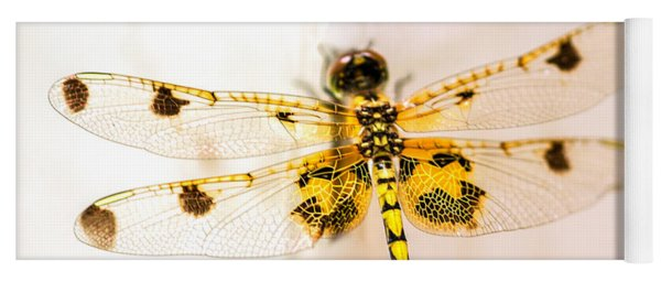 Yellow Dragonfly Pantala Flavescens Yoga Mat