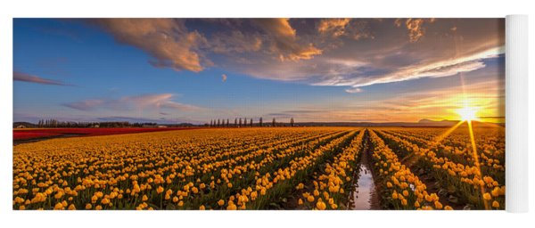 Yellow Fields And Sunset Skies Yoga Mat