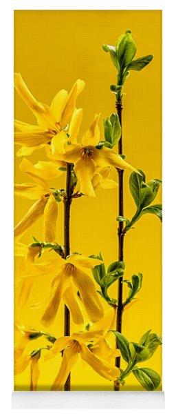 Yellow Forsythia Flowers Yoga Mat