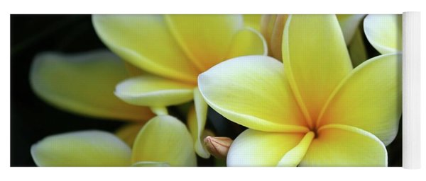 Yellow Plumeria Cascade Yoga Mat