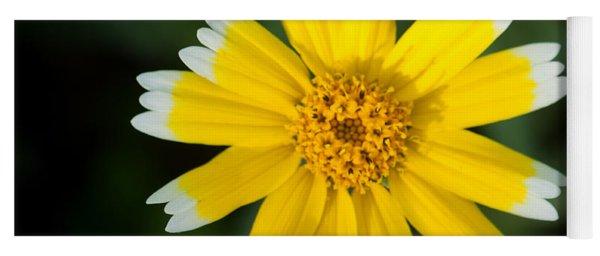 Yellow Sunshine  Yoga Mat