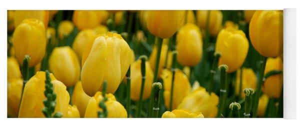 Yellow Tulip Sea Yoga Mat