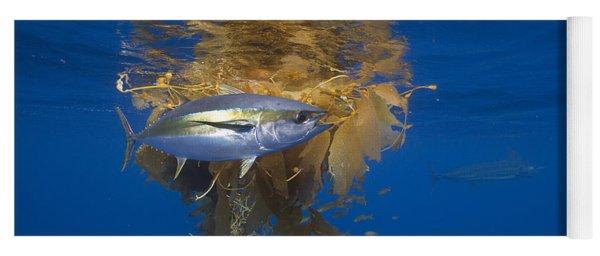 Yellowfin Tuna And Kelp Nine-mile Bank Yoga Mat