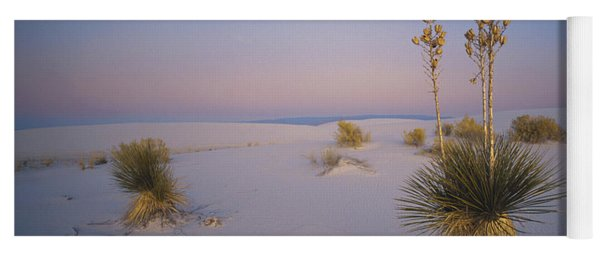 Yucca In White Sands Yoga Mat