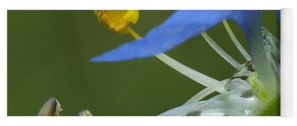Close View Of Slender Dayflower Flower With Dew Yoga Mat
