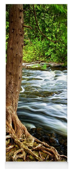 River Through Woods Yoga Mat