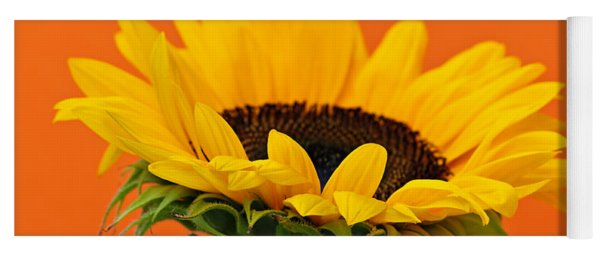 Sunflower Closeup Yoga Mat