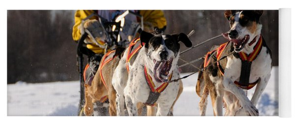 2011 Limited North American Sled Dog Race Yoga Mat