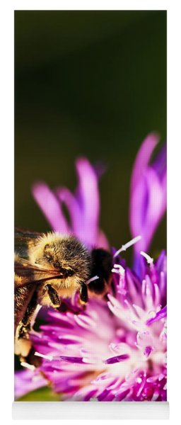 Honey Bee Yoga Mat