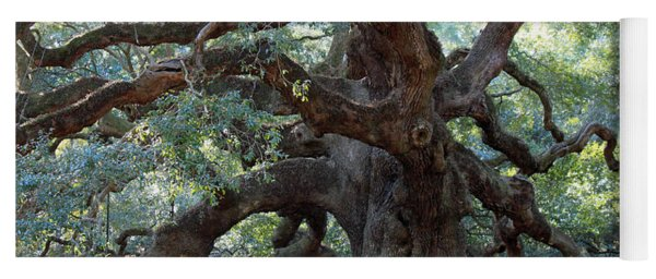 Angel Oak - Dont Climb Or Carve On The Tree Yoga Mat