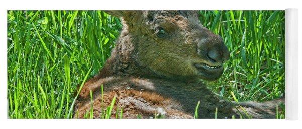 Baby Moose Yoga Mat