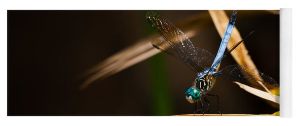 Blue Dasher Dragonfly Yoga Mat