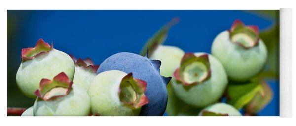 Blueberries And Sky Yoga Mat