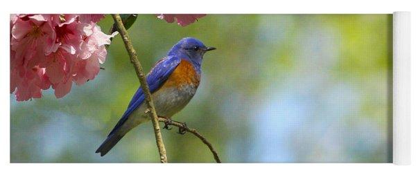 Bluebird In Cherry Tree Yoga Mat
