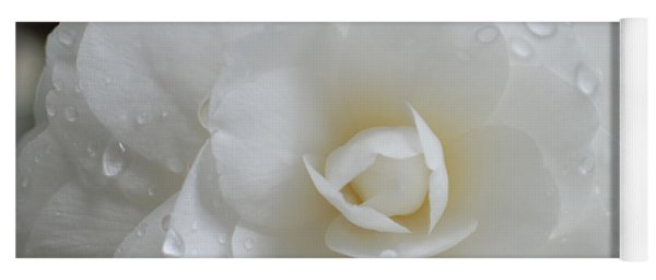 Camellia After Rain Storm Yoga Mat