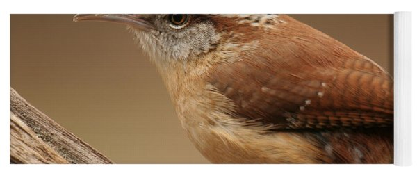 Carolina Wren Yoga Mat