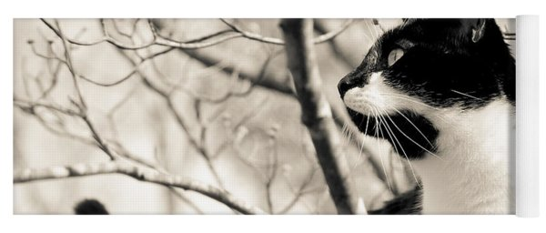 Cat In A Tree In Black And White Yoga Mat