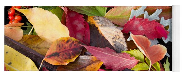 Colors Of Autumn Yoga Mat