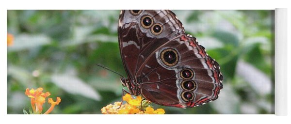 Costa Rica Butterfly Yoga Mat