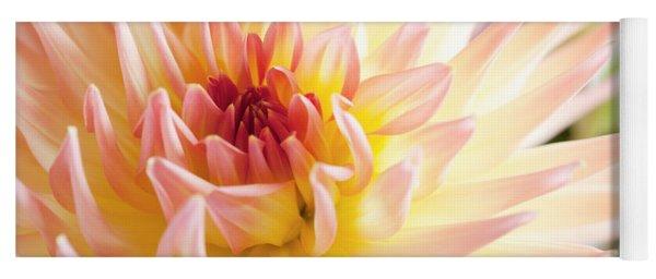 Dahlia Flower 01 Yoga Mat