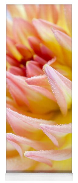 Dahlia Flower 13 Yoga Mat