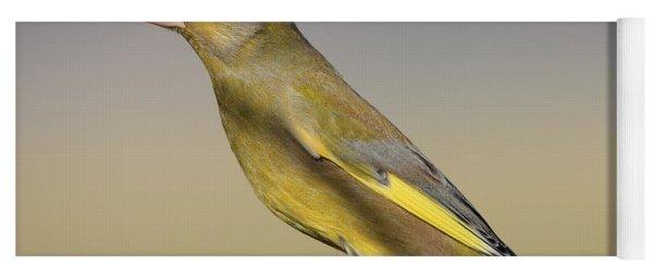 European Greenfinch Yoga Mat
