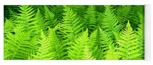 Ferns Galore Filtered Yoga Mat