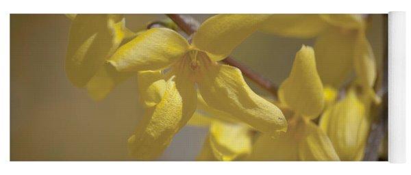 Forsythia Flowers Yoga Mat