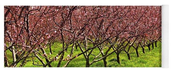 Fruit Orchard Yoga Mat