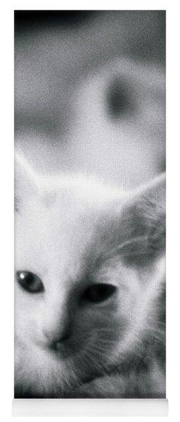 Ghost Kitties Yoga Mat
