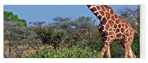 Giraffe Against Blue Sky Yoga Mat