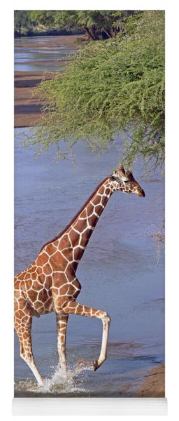 Giraffe Crossing Stream Yoga Mat