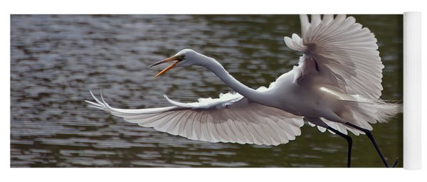 Great Egret In Flight Yoga Mat
