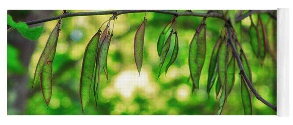 Green Redbud Seed Pods Yoga Mat