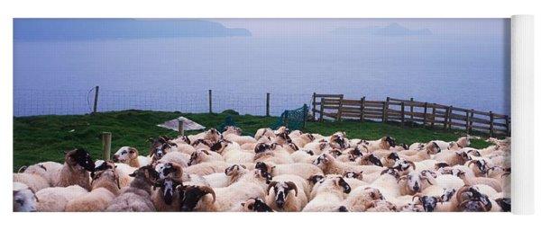 Herding Sheep, Inishtooskert, Blasket Yoga Mat