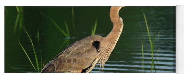 Heron Sunrise Yoga Mat