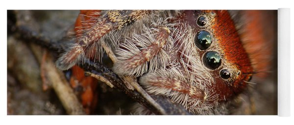 Jumping Spider Portrait Yoga Mat