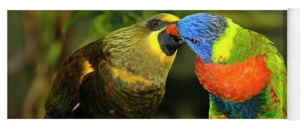 Kissing Birds Yoga Mat