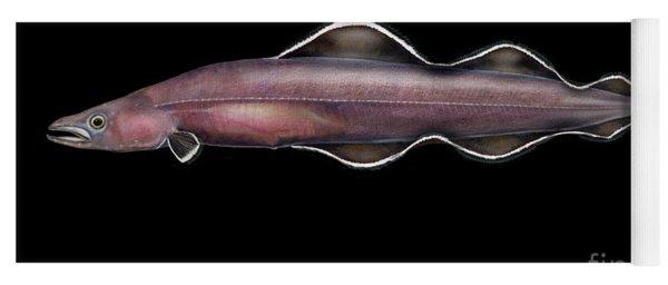 Living Fossil Eel - Protoanguilla Palau - By Maassen-pohlen Yoga Mat