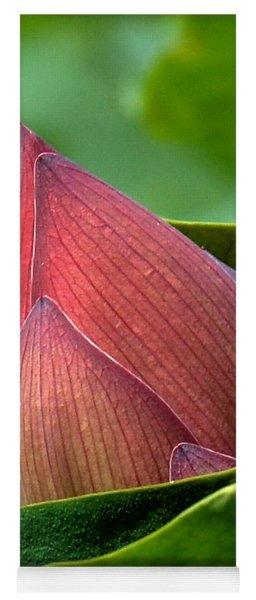 Lotus Bud--bud In A Blanket Dl049 Yoga Mat