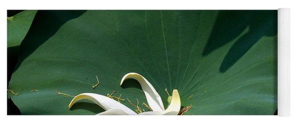 Lotus Leaf--castoff IIi Dl060 Yoga Mat