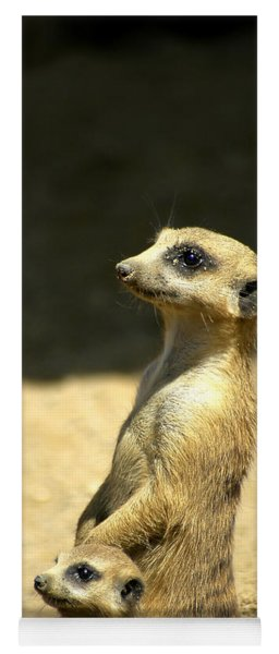 Meerkat Mother And Baby Yoga Mat