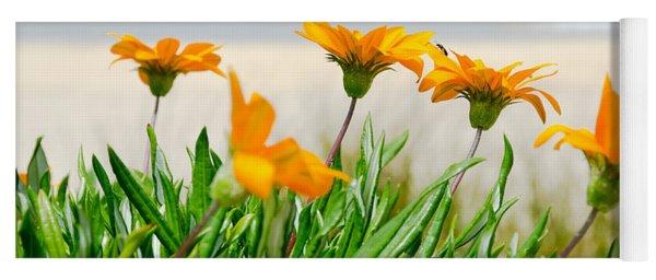 Orange Flowers On The Sunny Ocean Beach. Yoga Mat