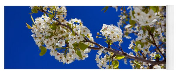Pear Spring Yoga Mat