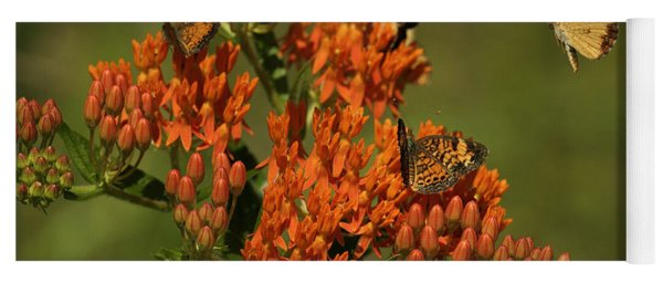 Pearly Crescentpot Butterflies Landing On Butterfly Milkweed Yoga Mat