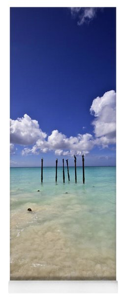 Pelicans Of Sunny Aruba Yoga Mat