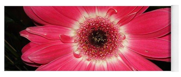 Pink Gerbera Daisy Yoga Mat