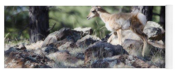Pronghorn Antelope Fawn Yoga Mat